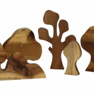 set of 5 lichee wood trees