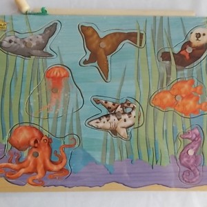 magnetic puzzle kelp forest creatures