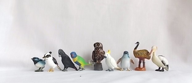 set of nine australian birds