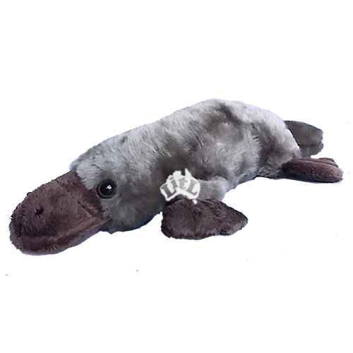 platypus weighted toy