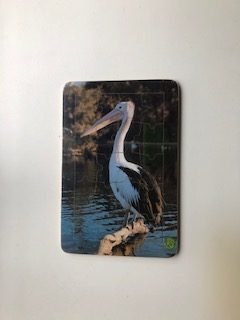 pelican puzzle